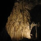 Cave Cathedral - Carlsbad Caverns, NM by obimomkenobi