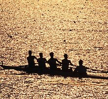 """""""Silhouetted Crew Team"""" by krod18"""