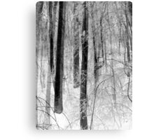 Winter Tapestry Canvas Print