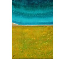 Chamisa in Bloom original painting Photographic Print