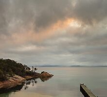 Beautiful Tassie by Mel Brackstone