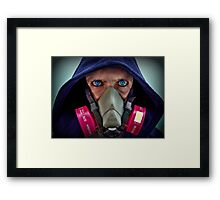 DISTRICT 666 Framed Print