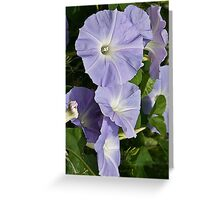 Pale and Blue Greeting Card