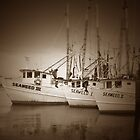 """A Family of Shrimp Boats"" by krod18"