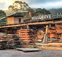 Millgrove Sawmill by Frank Moroni