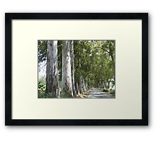 Old Mugla - Marmaris Road Framed Print
