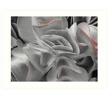 Succulents in the Botanical Gardens B/W with Red III Art Print