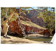 Ormiston Gorge,West McDonell Ranges,N.T. Poster