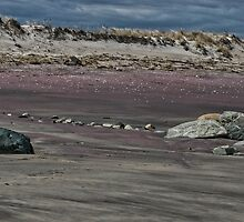 Purple Sand of Plum Island by RonSparks