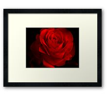 One Rose Red. Framed Print