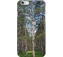 Beaver Pines iPhone Case/Skin