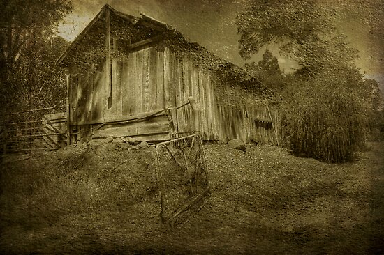 The Old Barn, Bella Vista, Bridgetown, WA by Elaine Teague