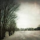 One winter day in my mind by Caterpillar