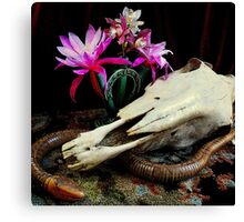 Western Union - Cactus With Orchids Canvas Print
