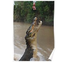 Jumping Crocodile Poster