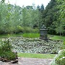 Lily pond, Kennerton Green, near Bowral, NSW by BronReid