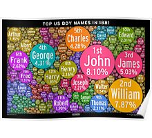 Top US Boy Names in 1881 - Black Poster