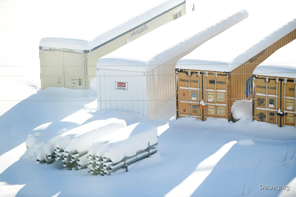 snowstorm sunday1 by Deweyreg
