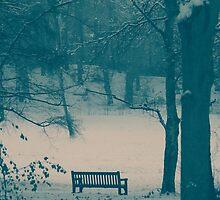 Lonley Bench by Robyn Liebenberg