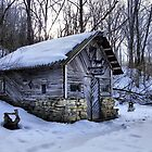 The Blacksmith Shop (Est. 1850) by wiscbackroadz