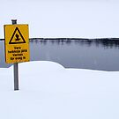 You've Been Warned! by Ritva Ikonen