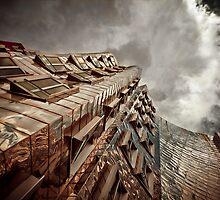 GEHRY | 04 by Frank Waechter