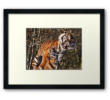 Not now honey I have a headache!! Framed Print