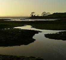 The Brig at saltwater by ragman