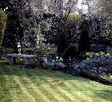 A Well Manicured Corner by Andrew  Bailey