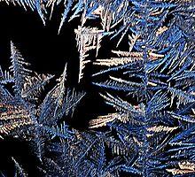Jack Frost's abstrast by cherylc1