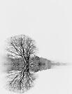 Tree by inkedsandra