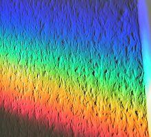 Rainbow by newfan