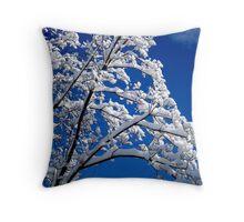 Blue Skies of Winter   ^ Throw Pillow
