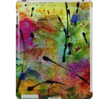 Miracle Valley iPad Case/Skin