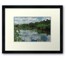 Berry Springs Framed Print