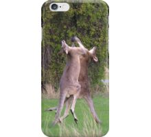 Kangaroos iPhone Case/Skin