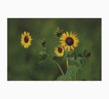 Kansas Country Wild Sunflower closeup Baby Tee