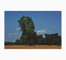 Colorful Kansas Summer pasture Baby Tee