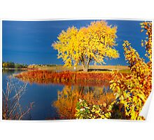 Holmes Lake in Autumn Poster