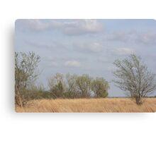 Kansas Colorful Countryside Canvas Print