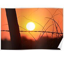 Bright Orange  Fence Line Sunset Poster