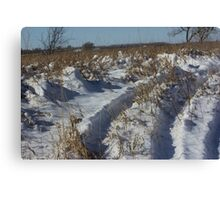 Track's in the Snow in Kansas Canvas Print