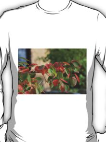 Colorful Fall Kansas Leave's Closeup T-Shirt