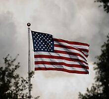 US Flag waving at STS-129 Launch by chibiphoto
