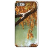 Colorful Fall Bald Cypress iPhone Case/Skin