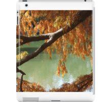 Colorful Fall Bald Cypress iPad Case/Skin