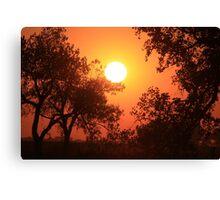 Blaze Orange Kansas Sunset with Tree silhouette's Canvas Print