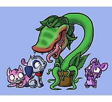 Littlest Pet Shop of Horrors Photographic Print