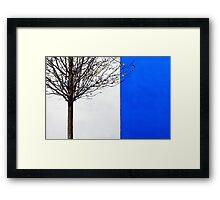 White and Blue Framed Print