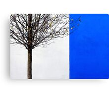White and Blue Canvas Print